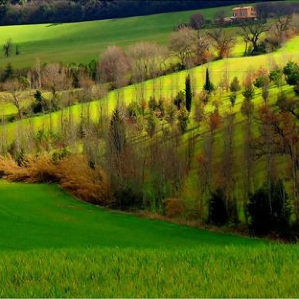 Green hills Macerata - Marche - Italy