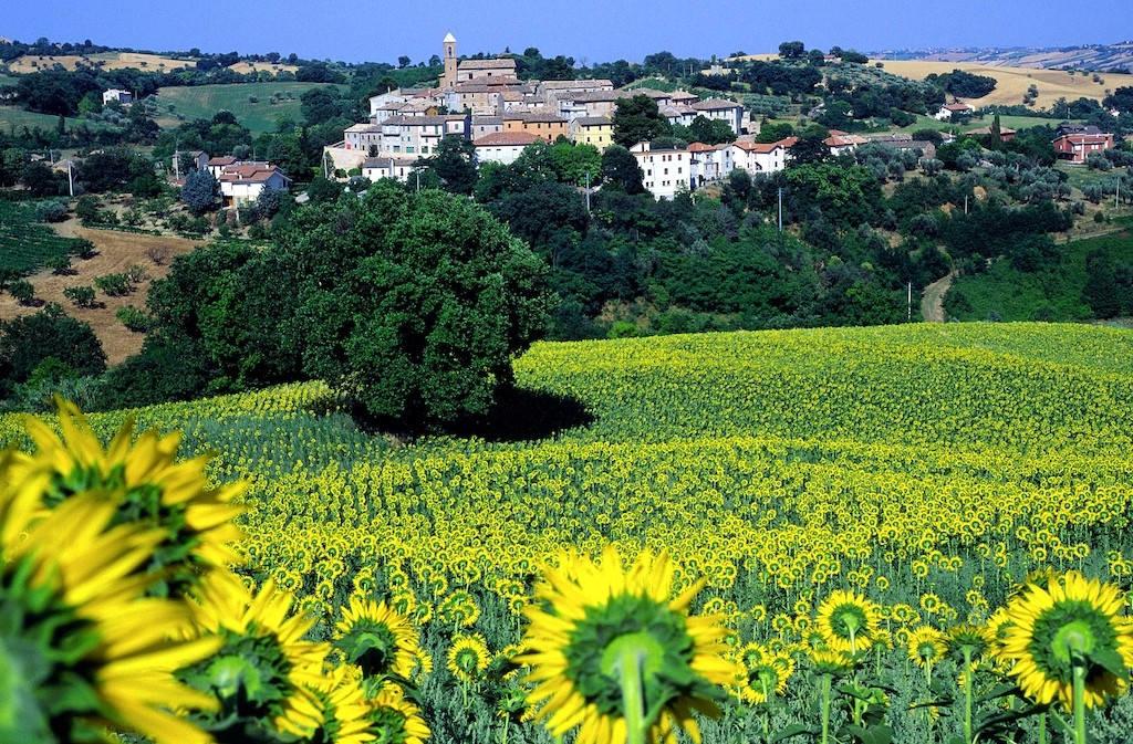 Serrungarina - Marche - Italy