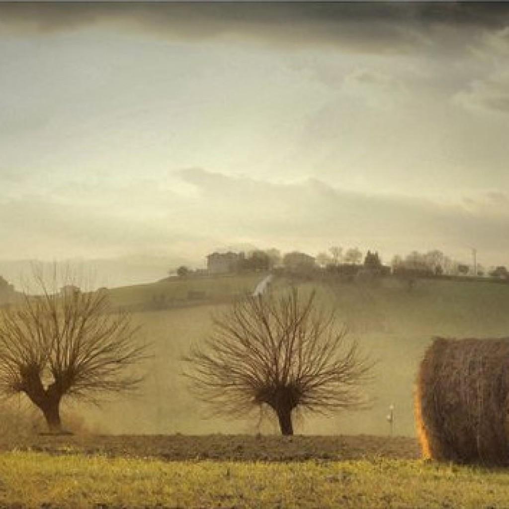 Spring smell Macerata 2 - Marche - Italy