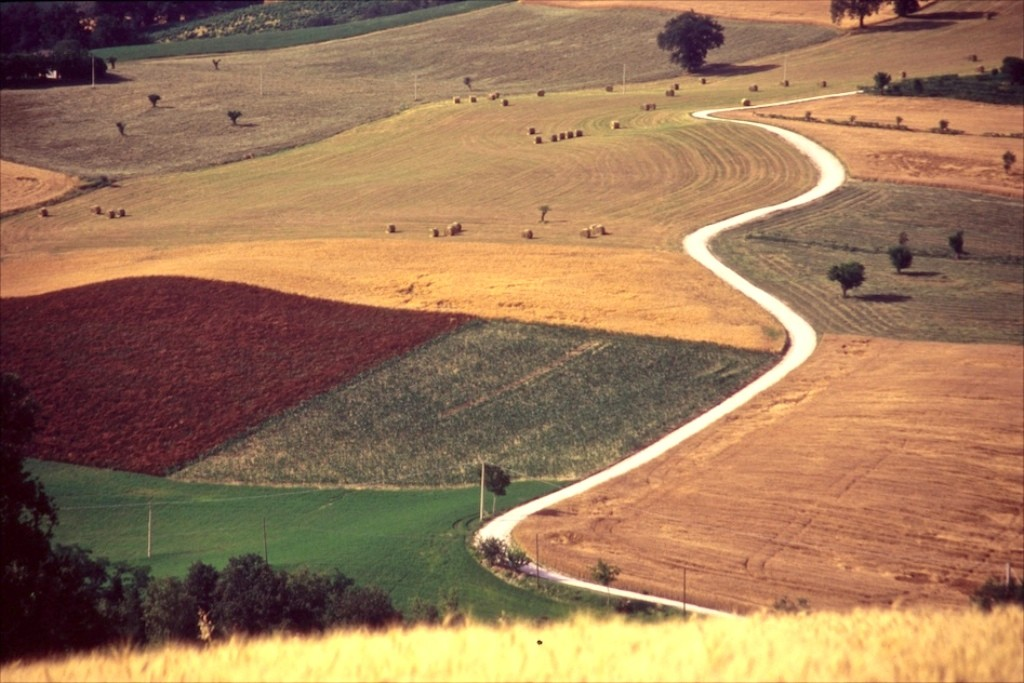 country road on the hill - Marche - Italy