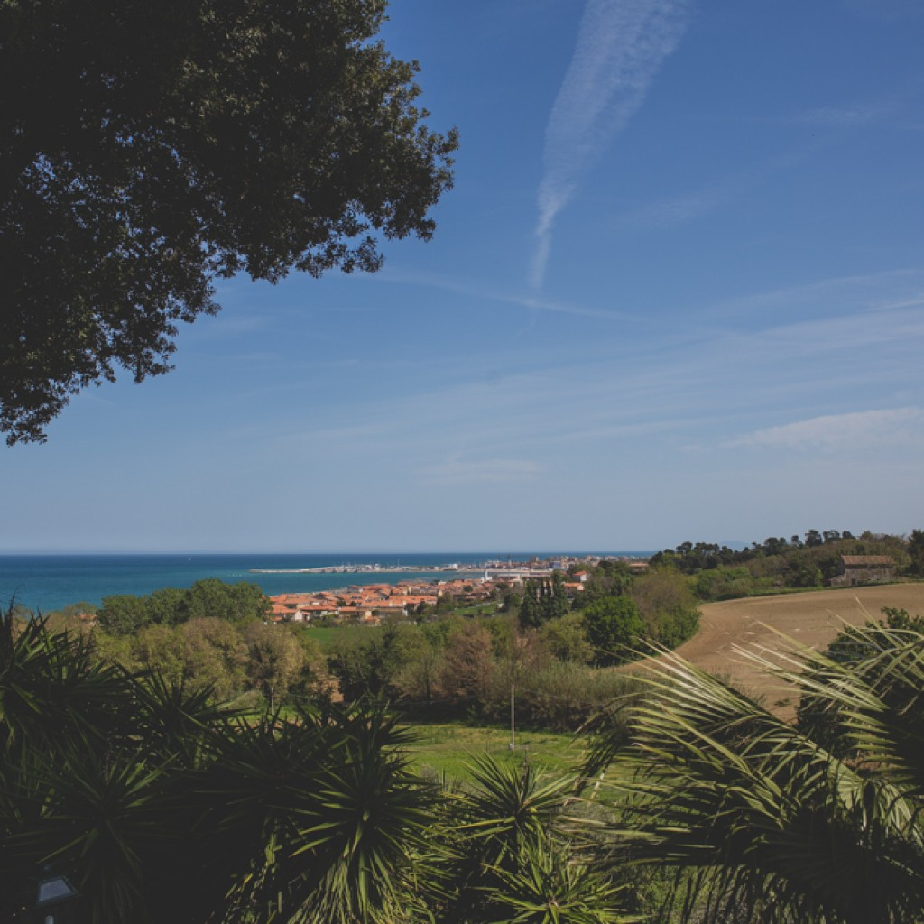 hills and sea landscape