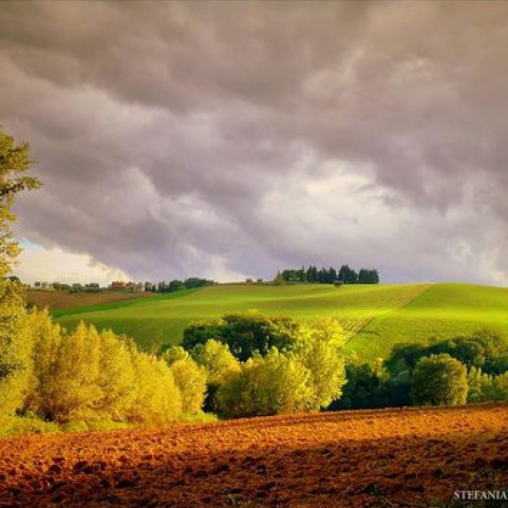 lovely hills - Macerata - Marche - Italy